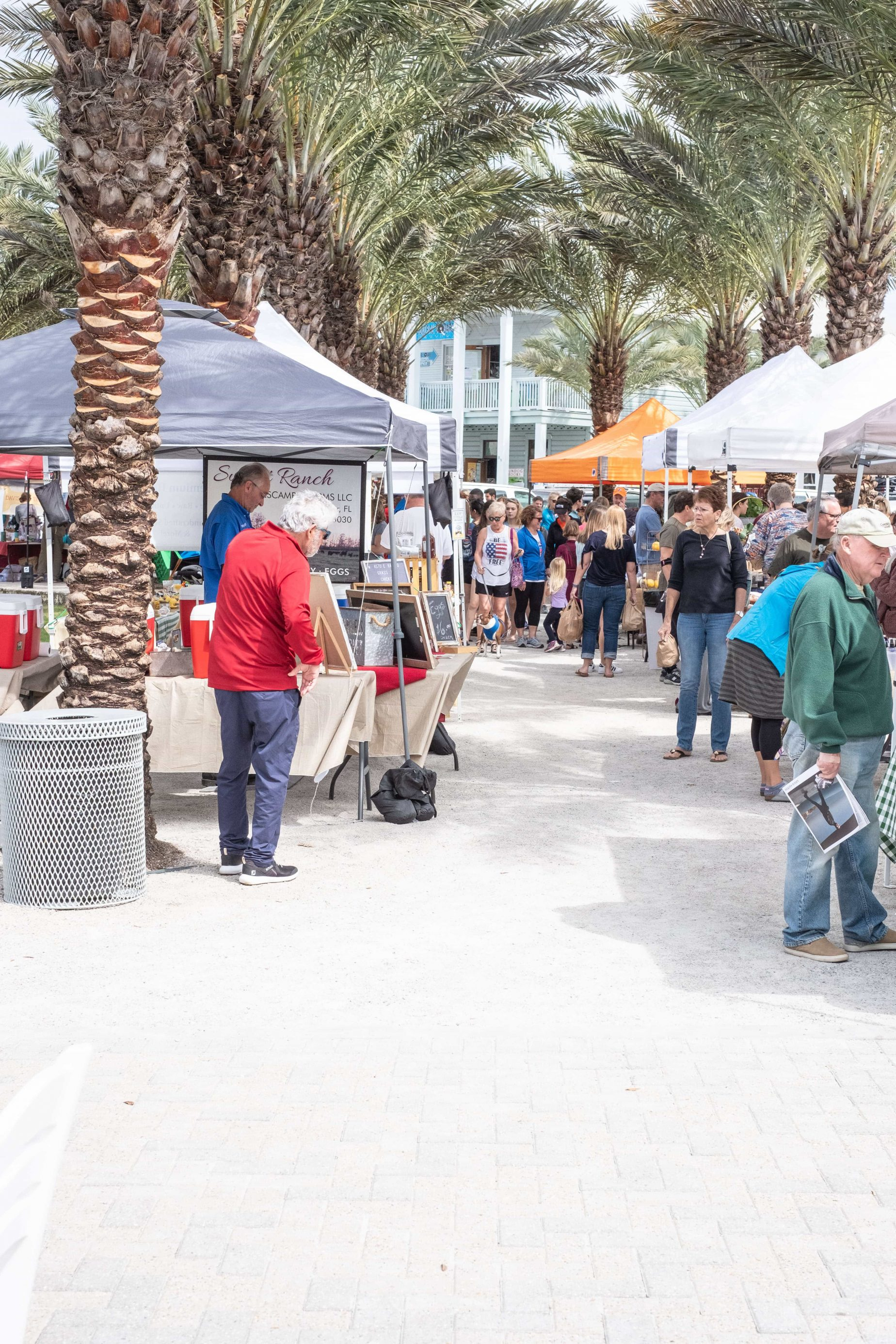 Seaside Farmers Market: What You Need To Know